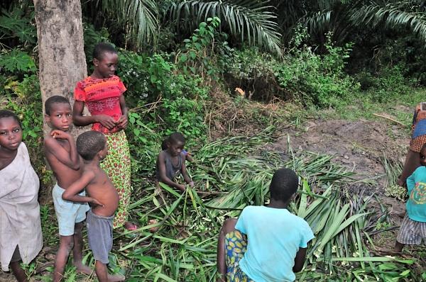 Impletind frunzele de palmier